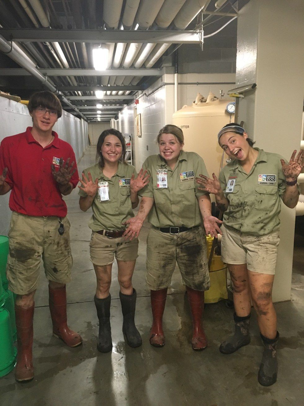 9 Important Life Skills Every Zookeeper Has Mastered Zoology