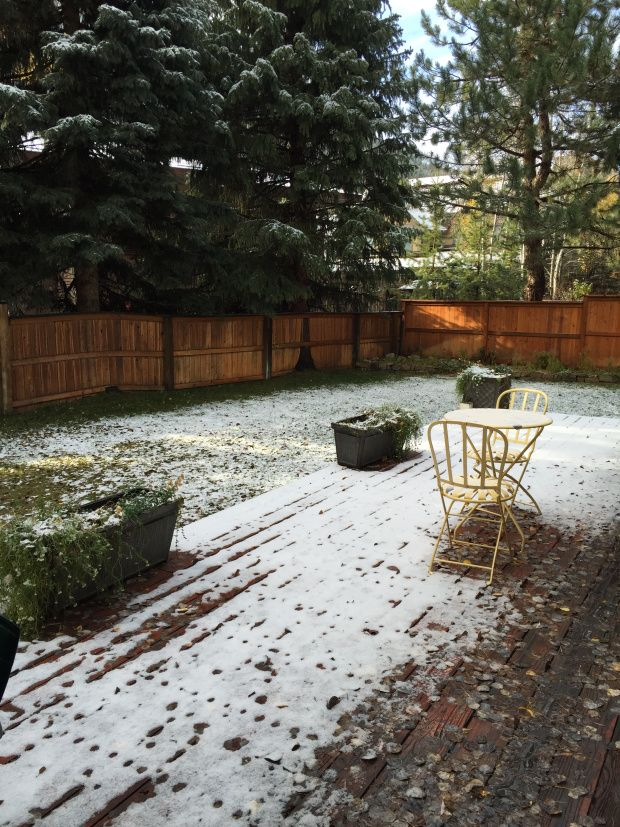 the backyard - first idaho snow