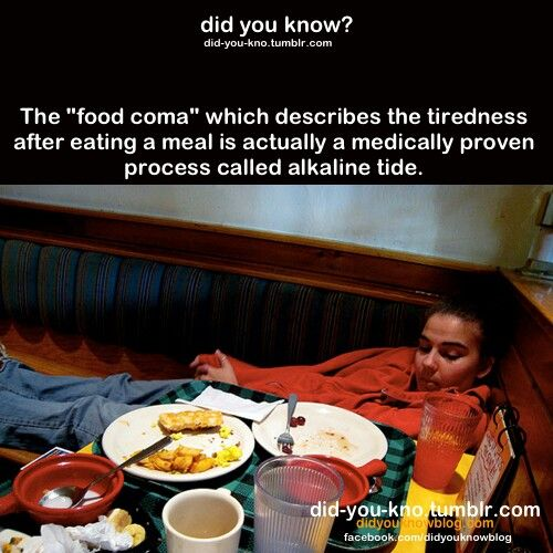You Meab The Ites Tiredness After Eating Did You Know Food