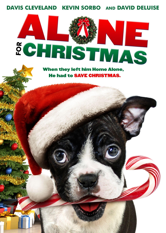 Pin by Katya Coldheart on Films/TV 2019 Christmas alone