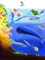 Ocean Layers Sunlight ...