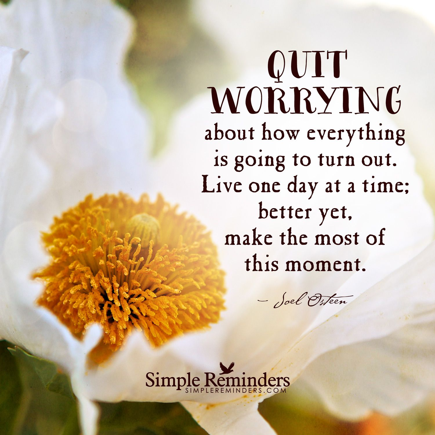 Quit worrying about how everything is going to turn out. Live one