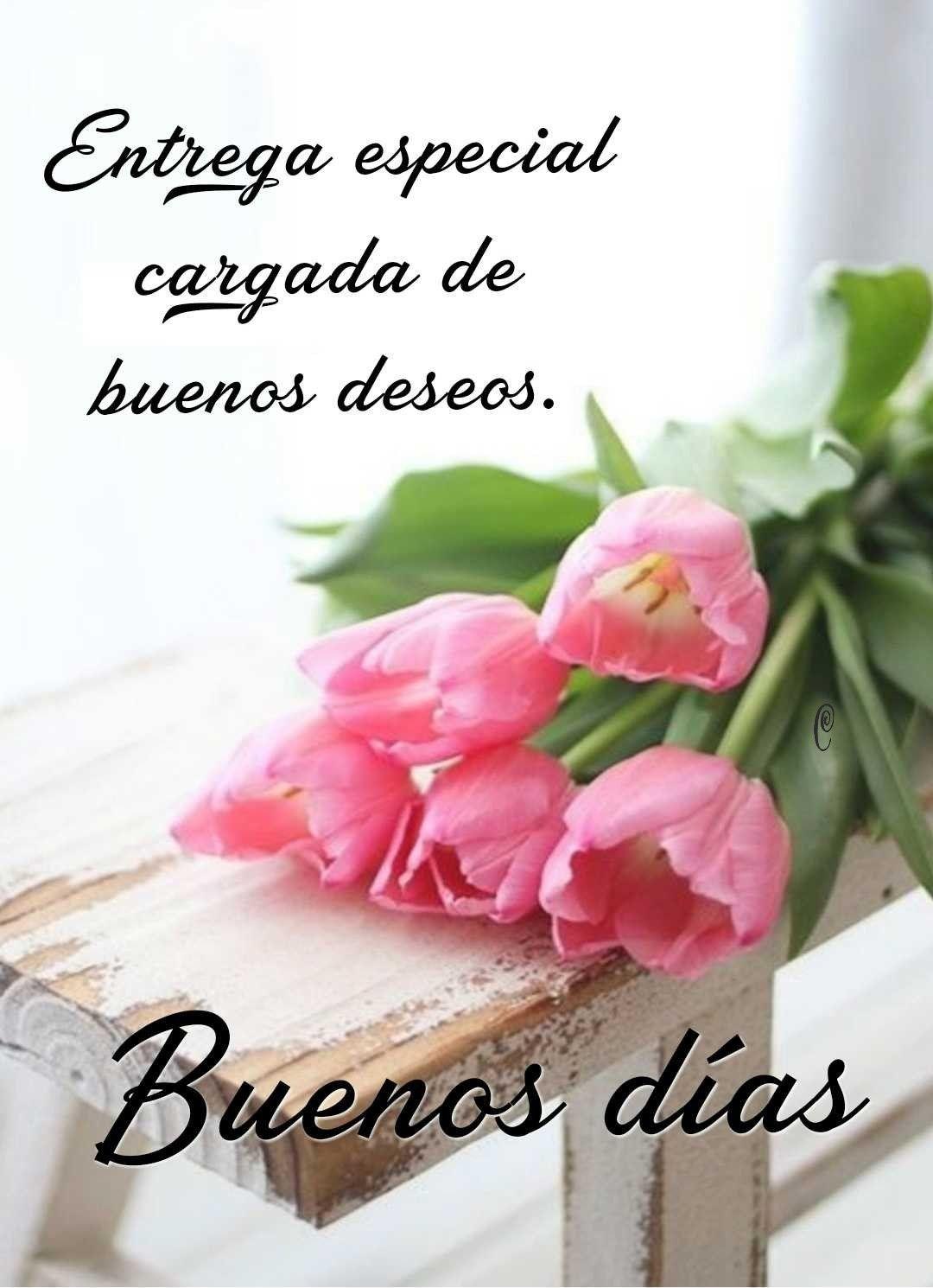 Que Tengas Un Excelente Día Flaminga143 Frases Bonitas