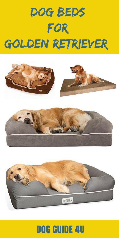 Best Dog Beds For Golden Retrievers Cool Dog Beds Dogs Golden