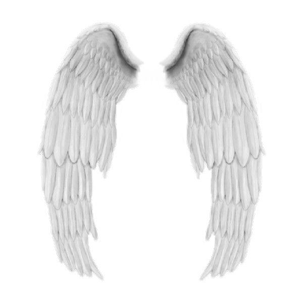 tubes ailes ❤ liked on Polyvore featuring wings, angels, backgrounds, fantasy and fairies