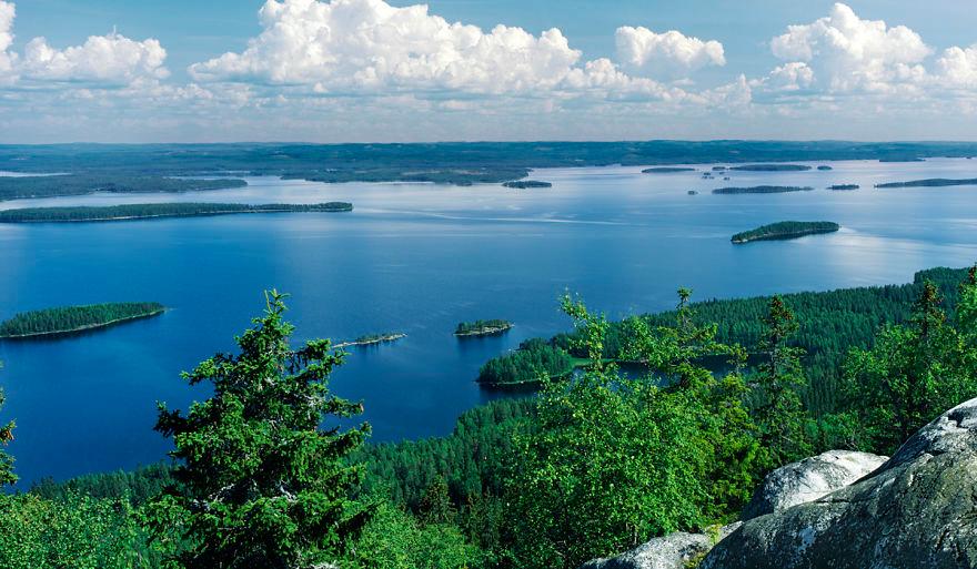Jazero Pielinen pri pohľade z hory Koli Fínsko