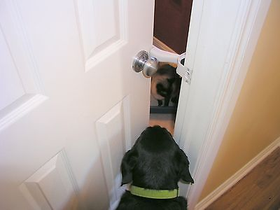 Dog Door Dog Proof Dogs Pinterest Doors Dogs And Cats
