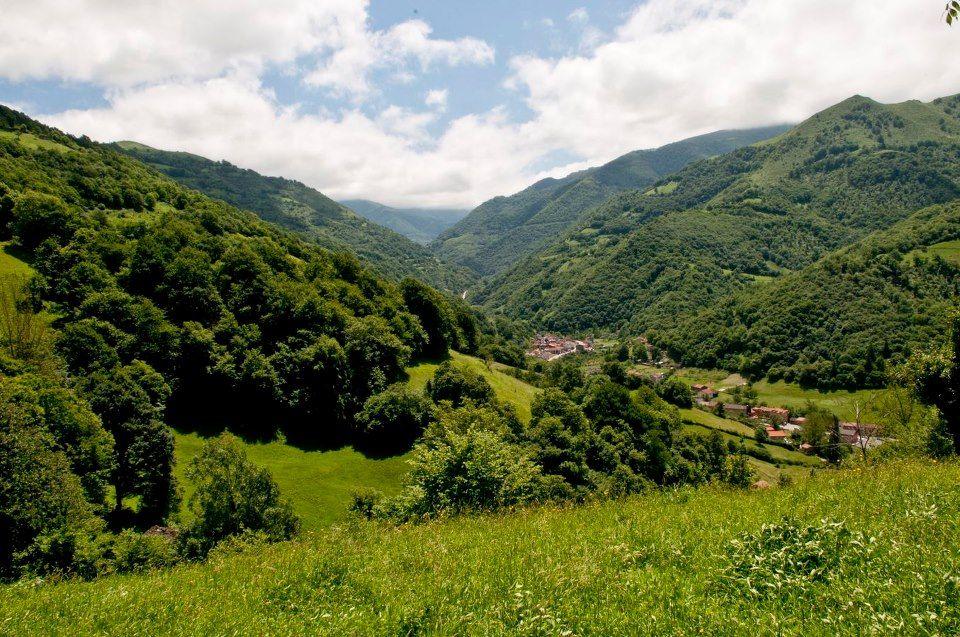 Valle del Río Negro