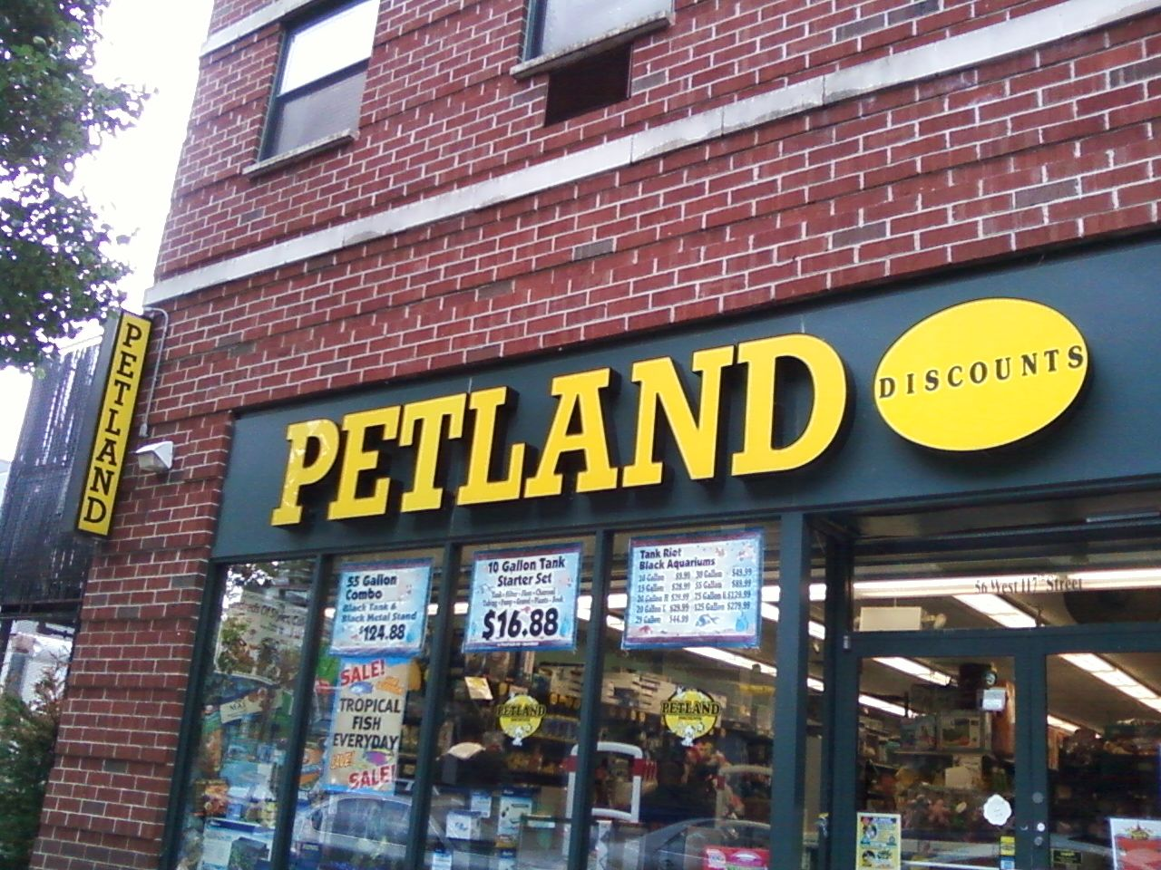 PETLAND animals come from puppy mills. Adopt instead of