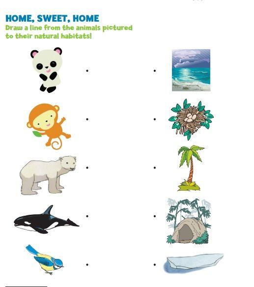 Crafts Actvities And Worksheets For Preschool Toddler And Kindergarten Animals Habitat Animal Habitat Worksheet Habitat Worksheets For Kids Animal habitat worksheets for kindergarten