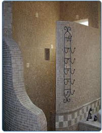 in my next house i want a walk-in shower with no curtain