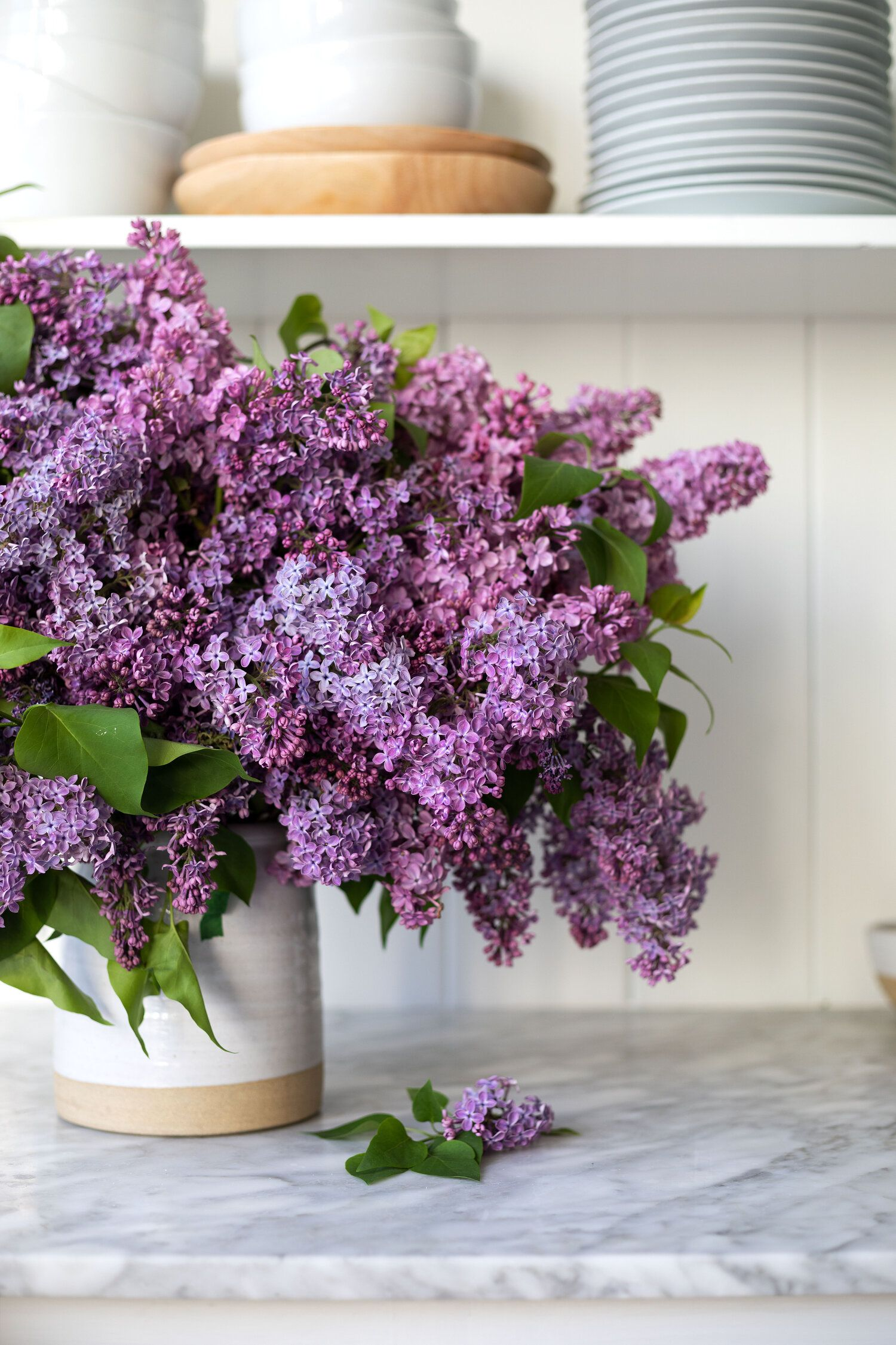 How To Arrange An Overflowing Bouquet Of Lilacs Keep Them From Wilting The Grit And Polish In 2020 Lilac Bouquet Lilac Flower Arrangements