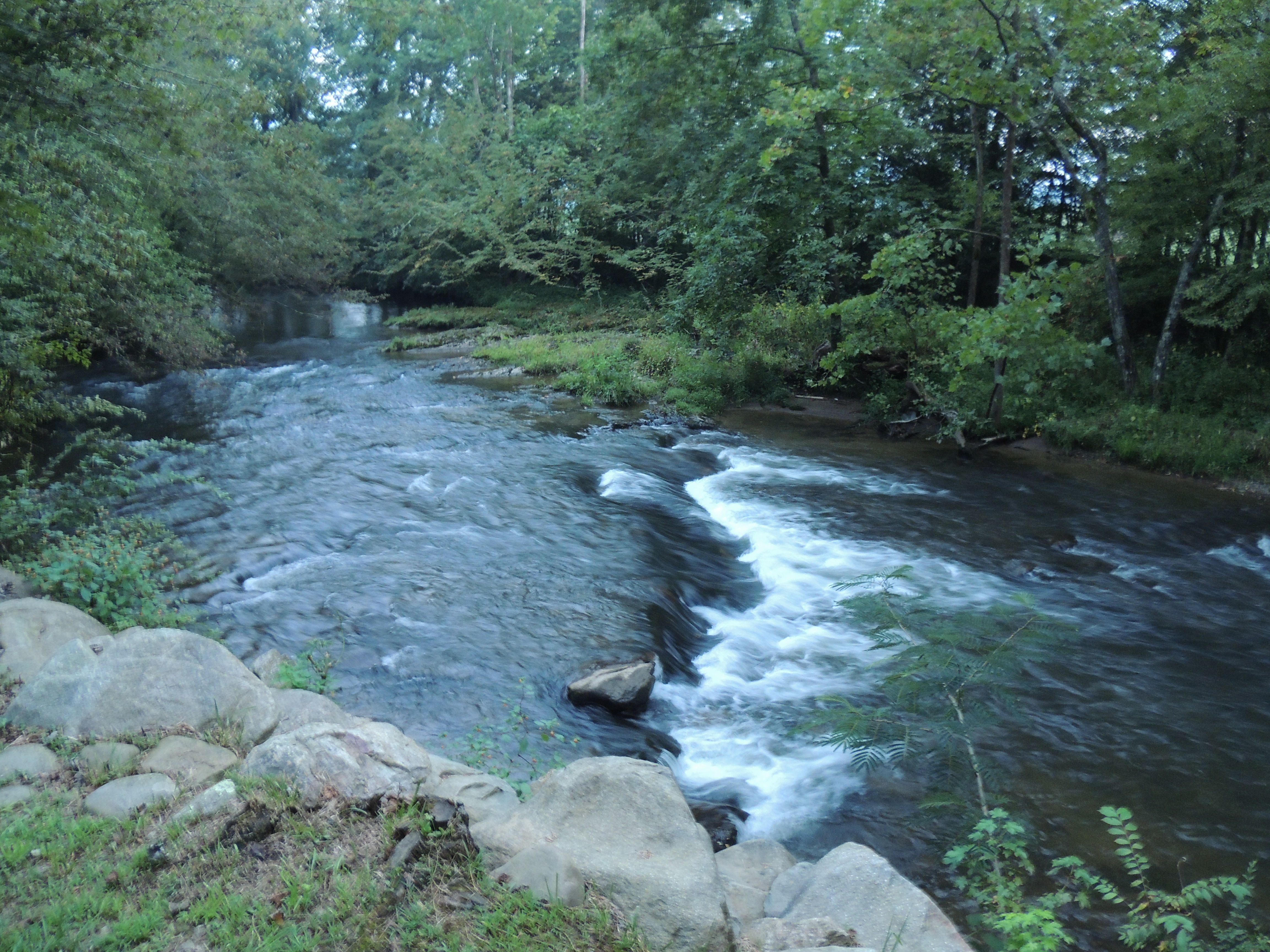 Cosby creek at river falls cabin cosby tn see our for Fishing cabins in tennessee