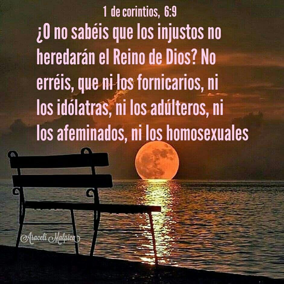 1 de Corintios, 6:9 - ¿O no sabéis que los injustos no heredarán el Reino de Dios? No erréis, que ni los fornicarios, ni los idólatras, ni los adúlteros, ni los afeminados, ni los homosexuales,