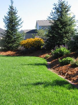 Berm for privacy - not crazy for the Christmas trees, but do ... Ideas Lighting Landscaping G Coyni on