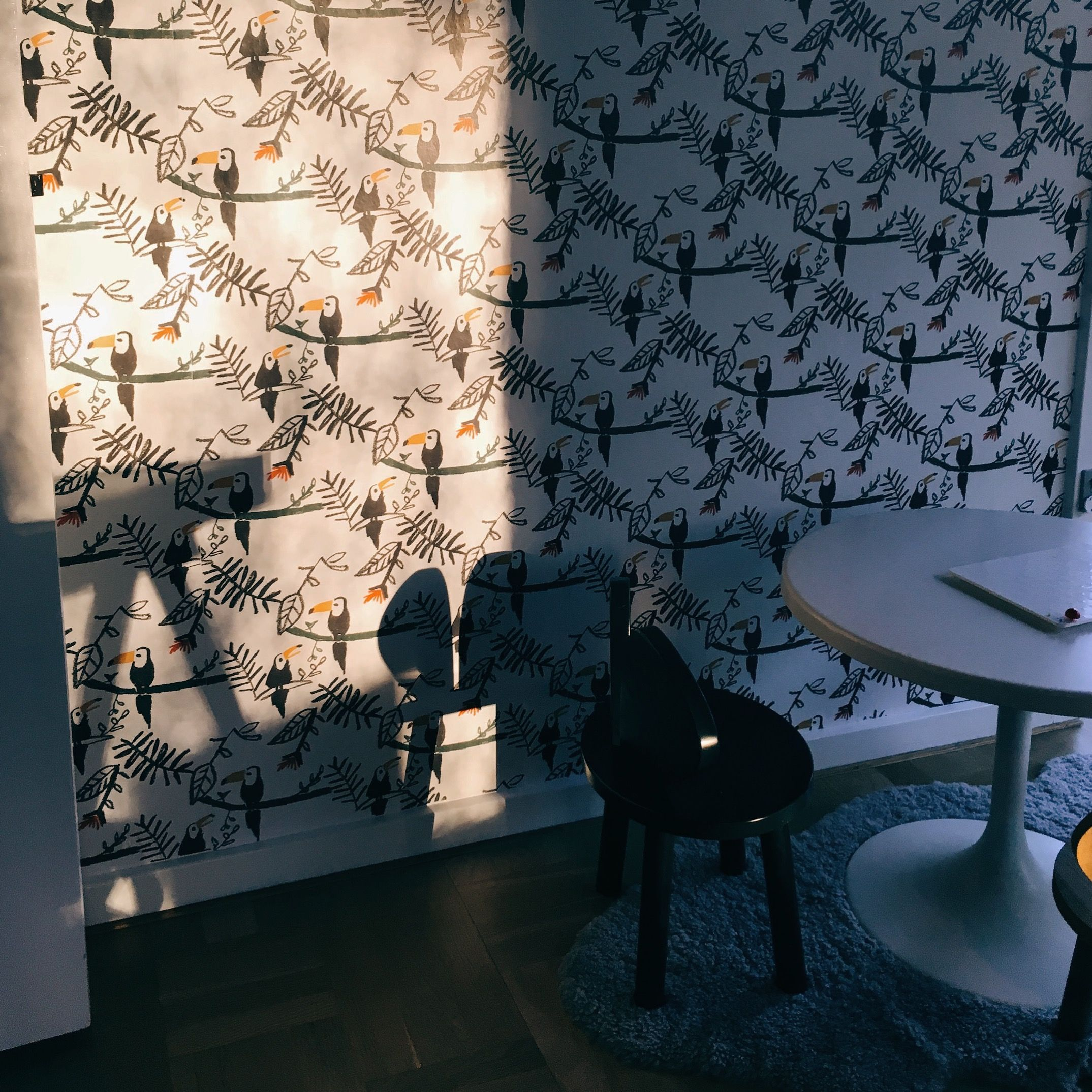 Morning light nofred tucans wallpaper and black mouse chair high end kids design