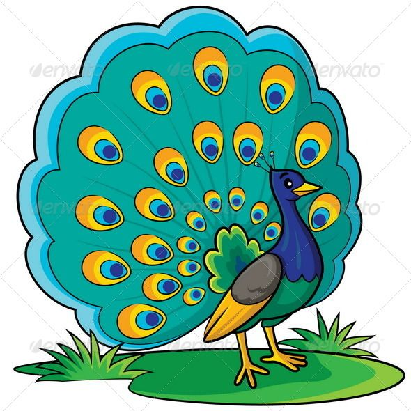Cute animal peacock. Cartoon animals characters images