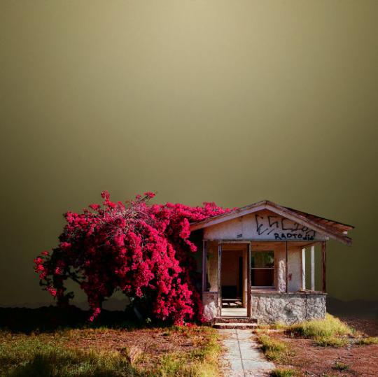Abandoned Houses, Ed Freeman