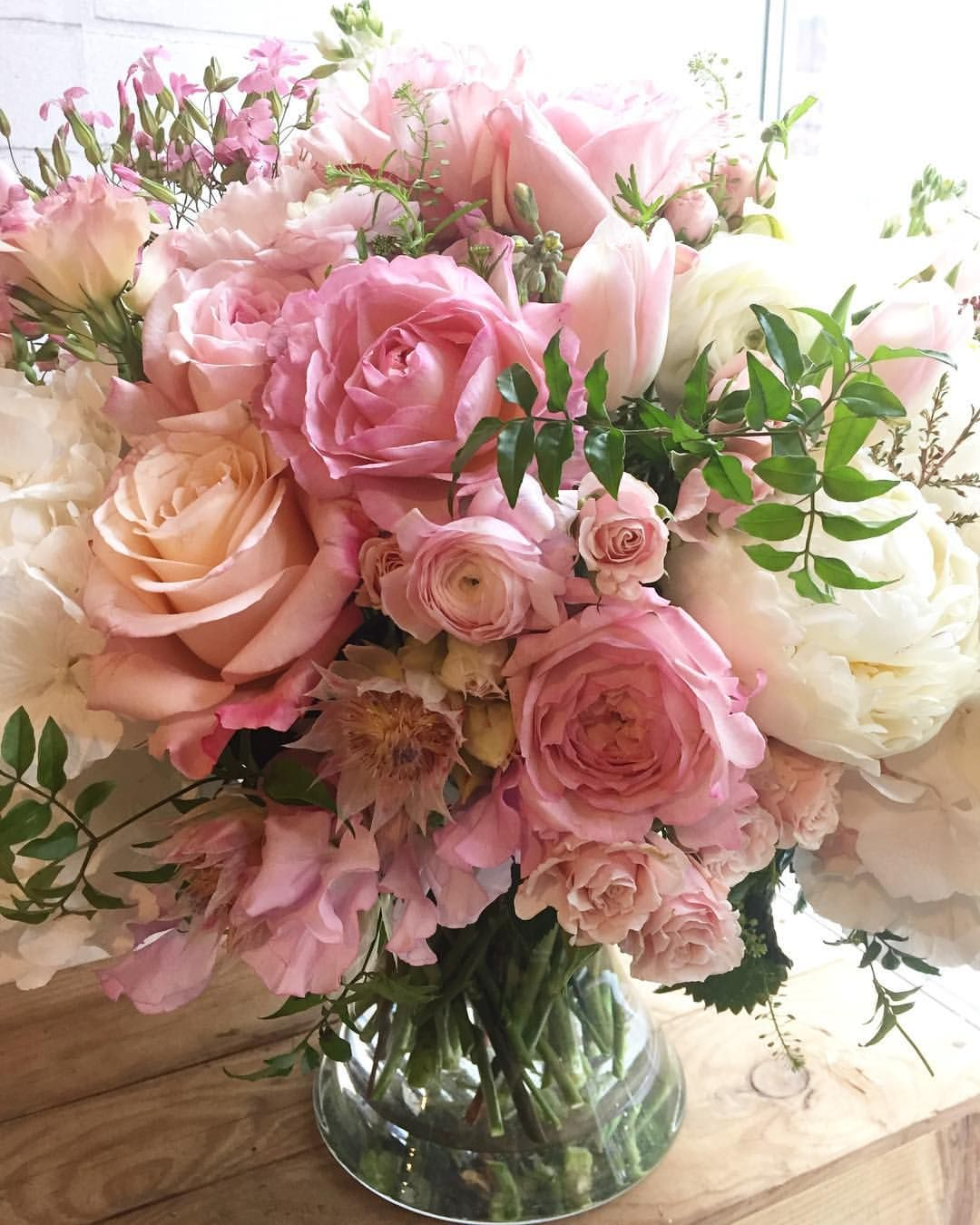 Pin By Caitlin Clements On Flowers Pinterest Flowers Beautiful