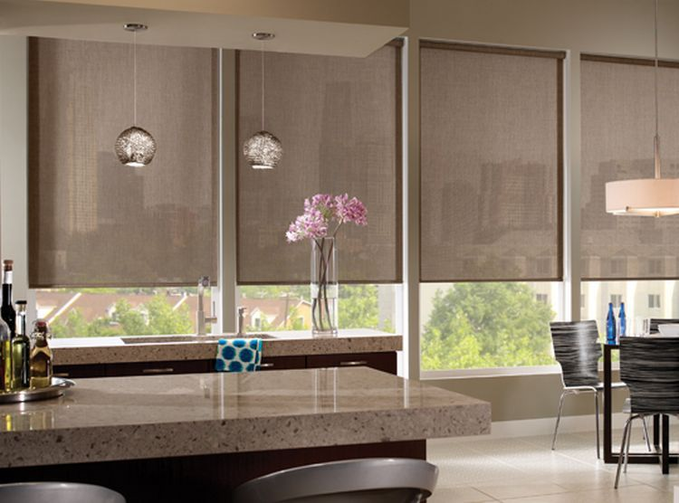 Roller Shades Roller Shades Blackout Shades Black Out