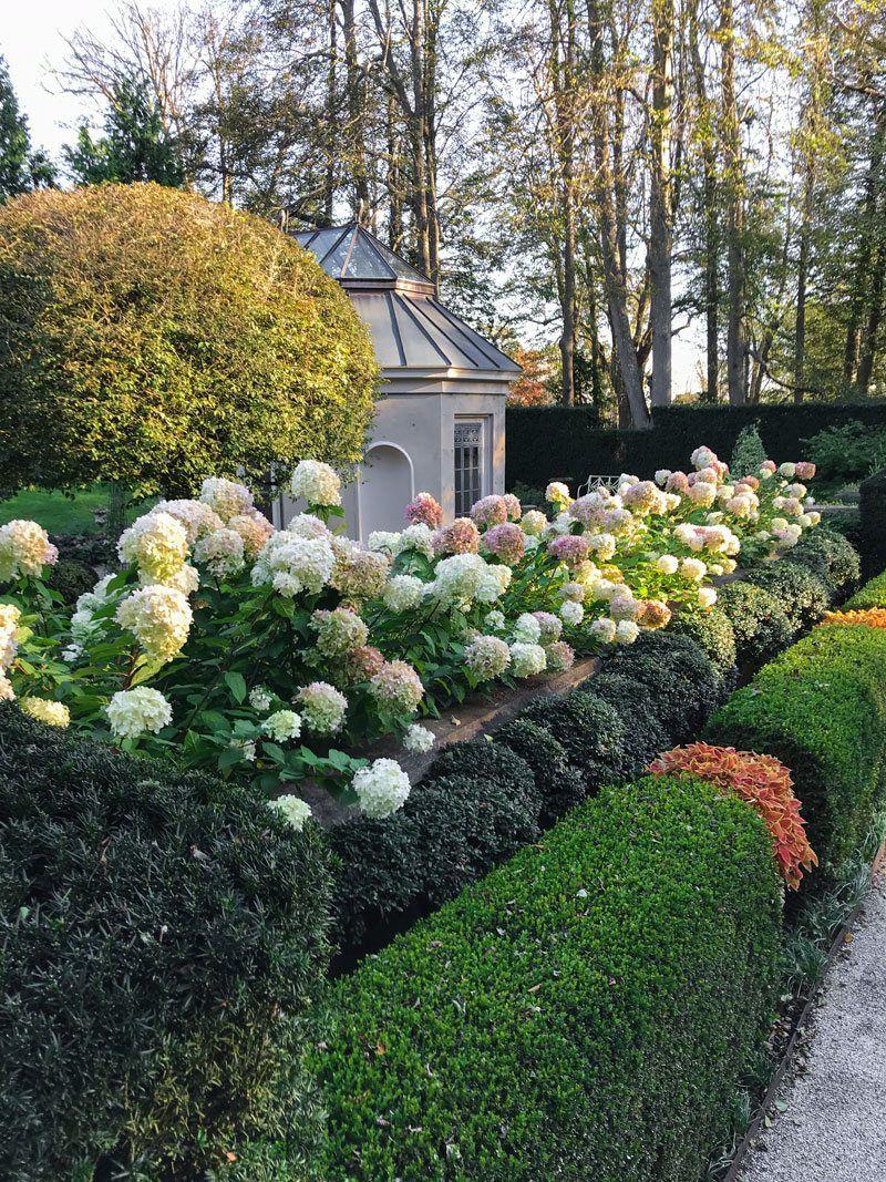 Landscape flower garden  HydrangeasuLimelightu   garden pathwaygatesarbortrellisfence