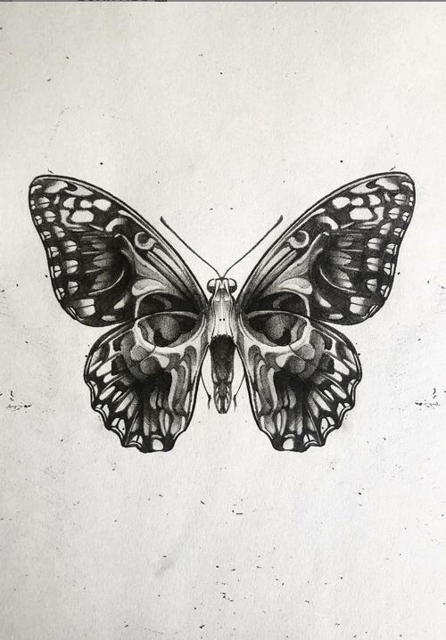 Photo of Schmetterlingszeichnung