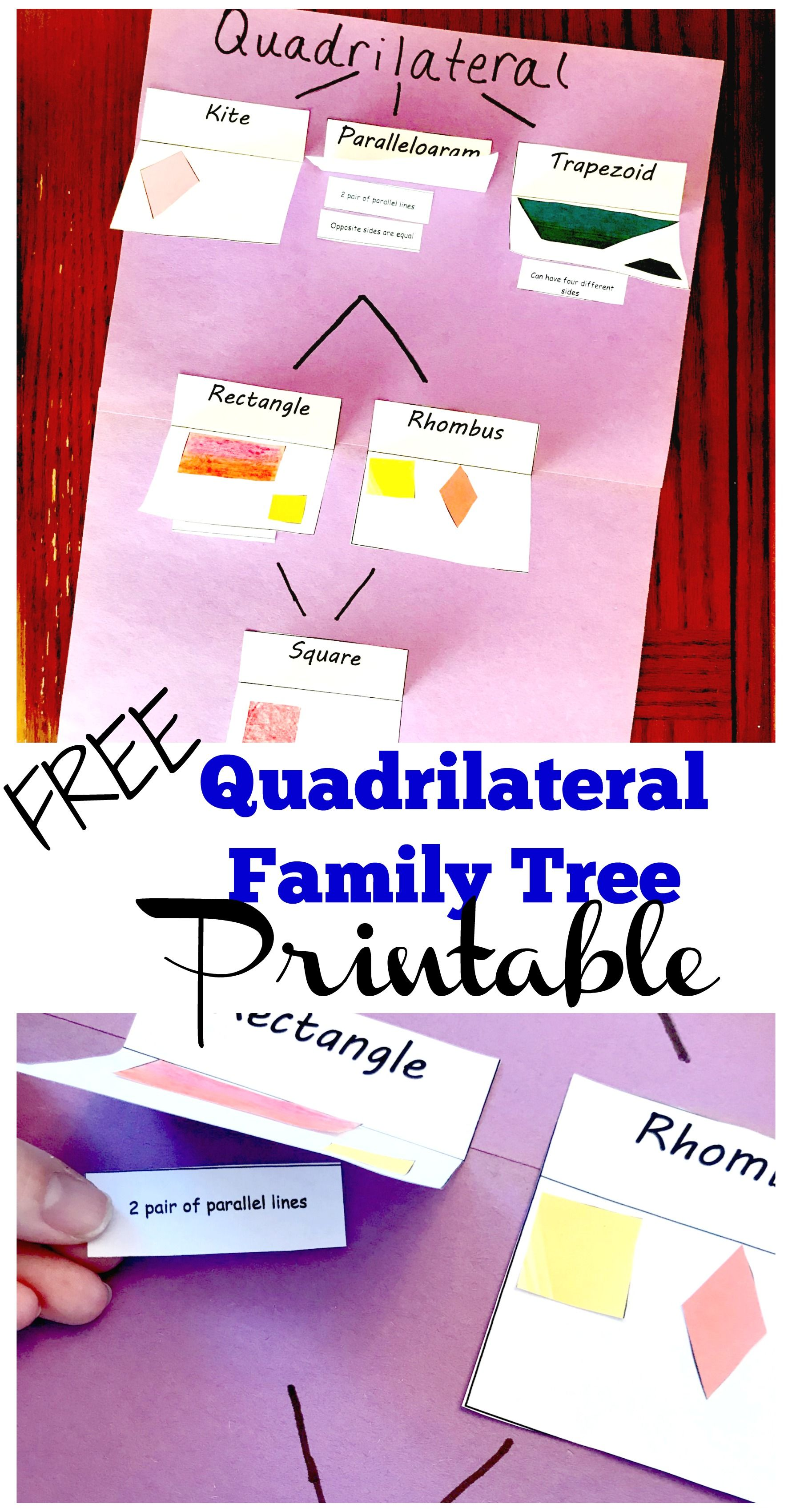 Free Printables To Help You Create A Quadrilateral Family