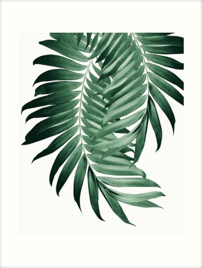 Palm Leaves Tropical Green Vibes 4 Tropical Decor Art Art Print By Anitabellajantz In 2021 Tropical Painting Tropical Wall Art Tropical Home Decor