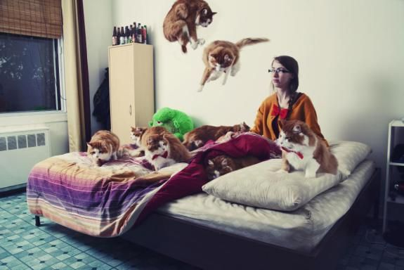 Crazy Cat People - Andreanne Lupien
