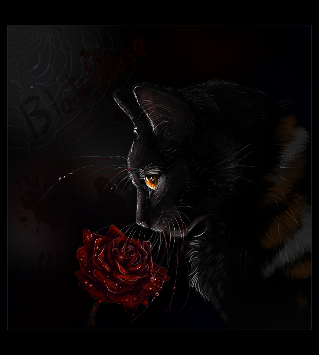 Black Roses With Blood Go Back Gallery For Black Rose With