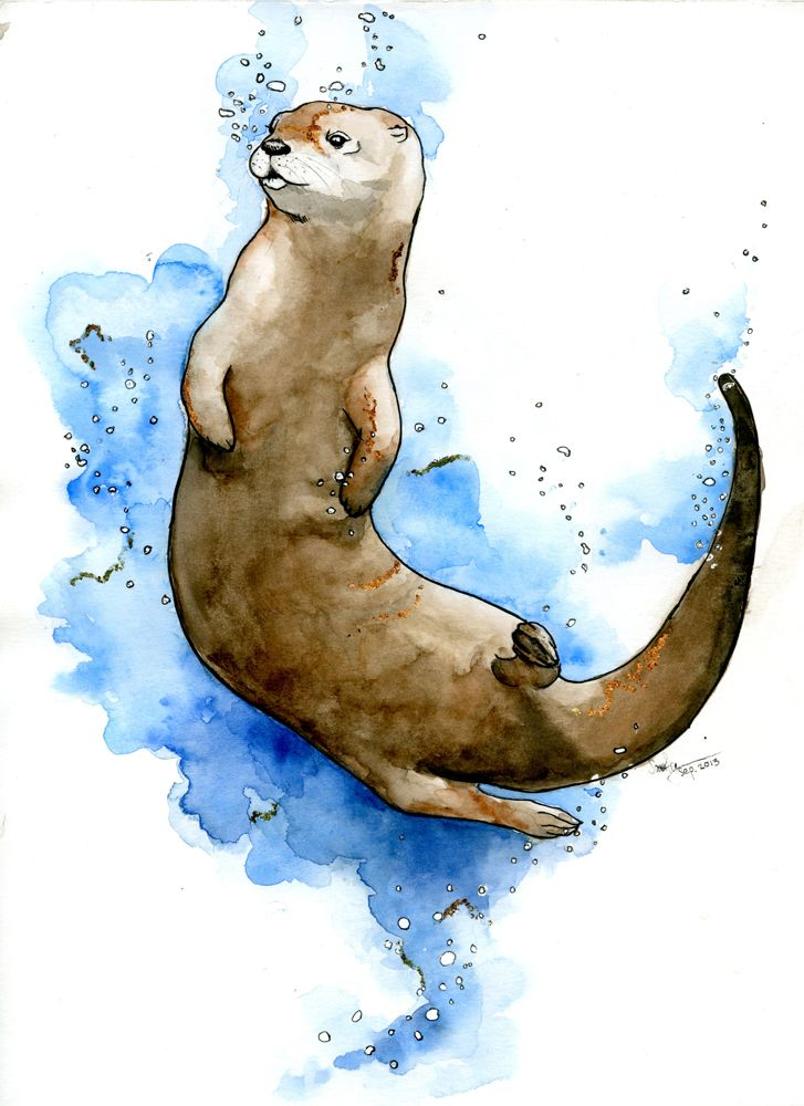 The Otter | ART, DRAWI...