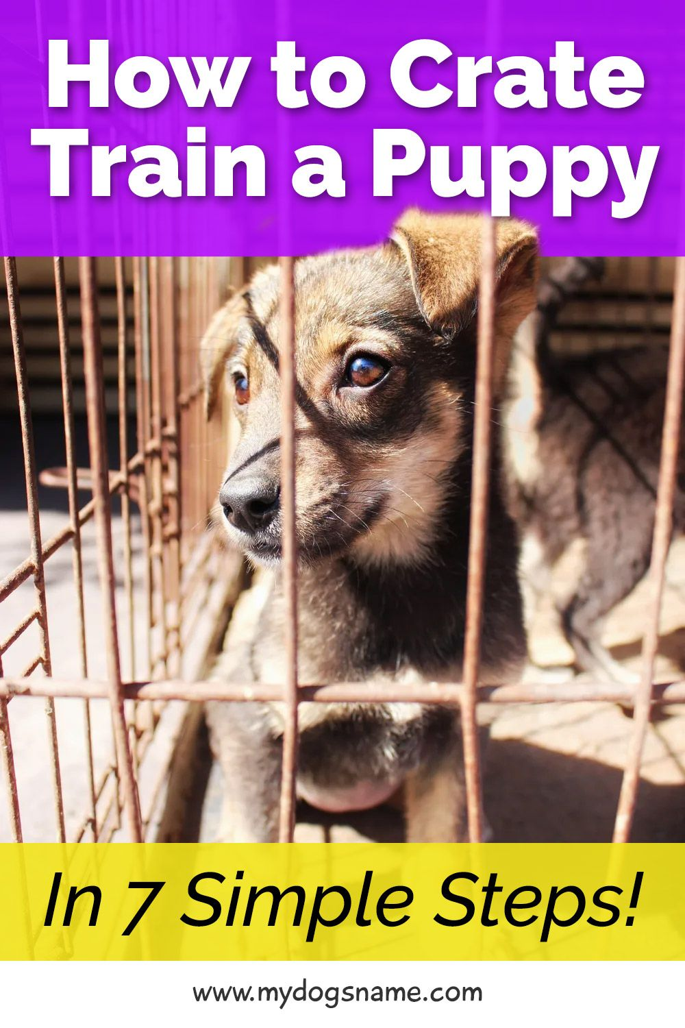 How To Crate Train A Puppy In 7 Simple Steps My Dog S Name Puppy Training Crate Training Puppy Crate Training Dog