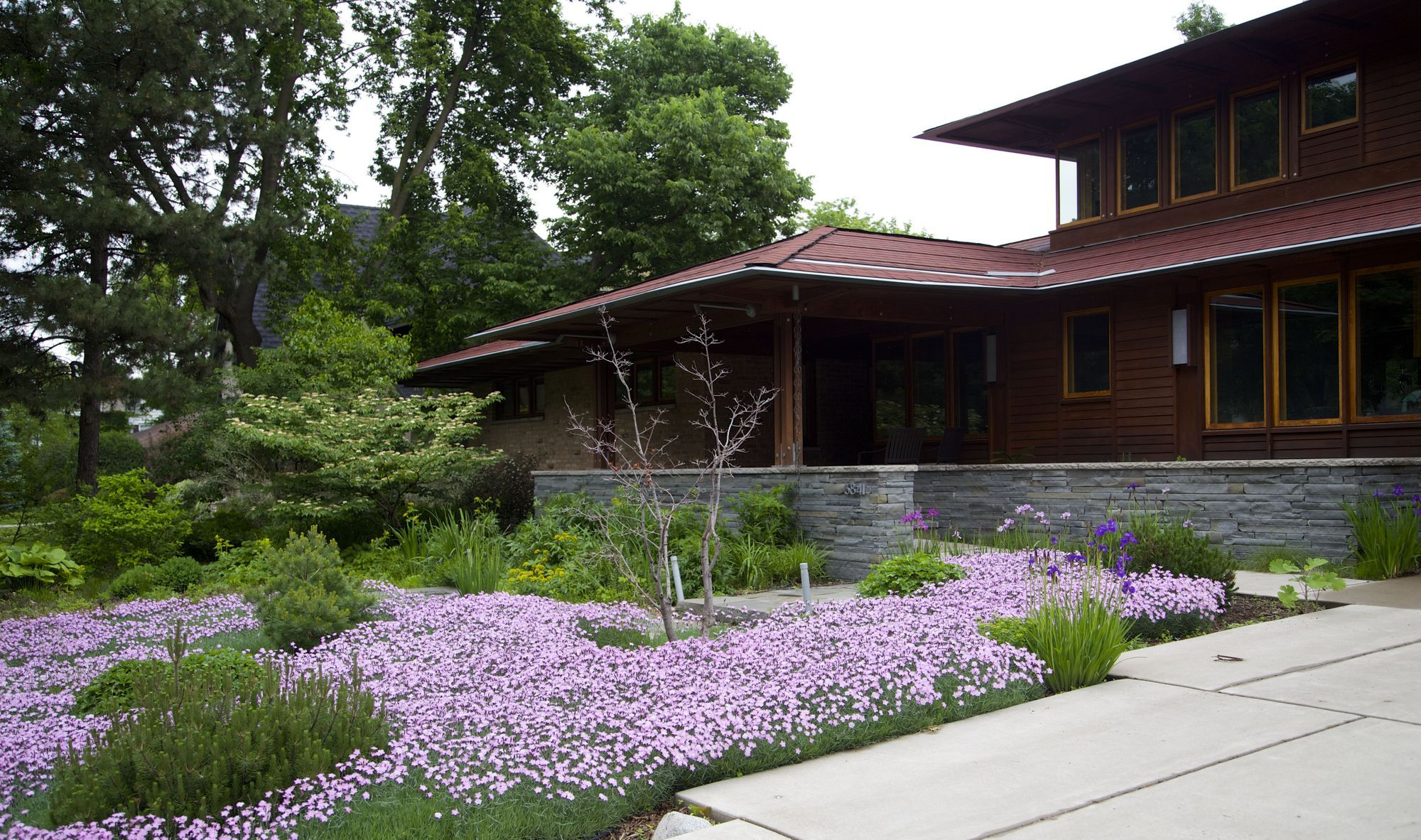 Genial If Youu0027re Done With Turf, Lawn Alternatives Include Dianthus.