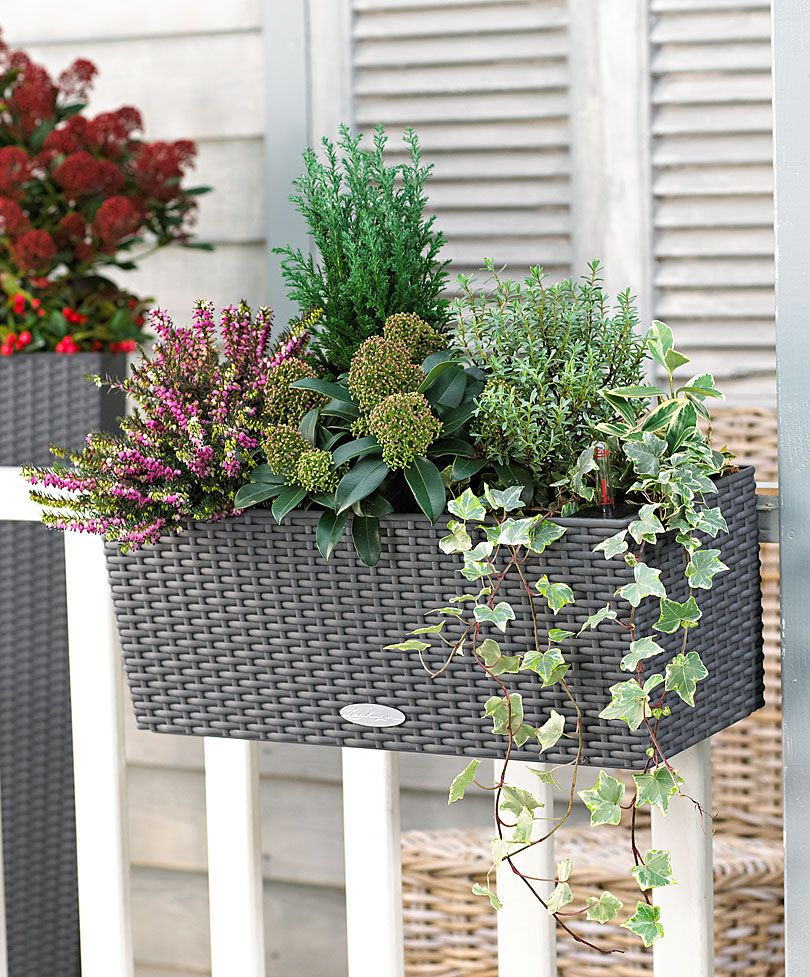 balconni re balconera cottage anthracite lechuza. Black Bedroom Furniture Sets. Home Design Ideas