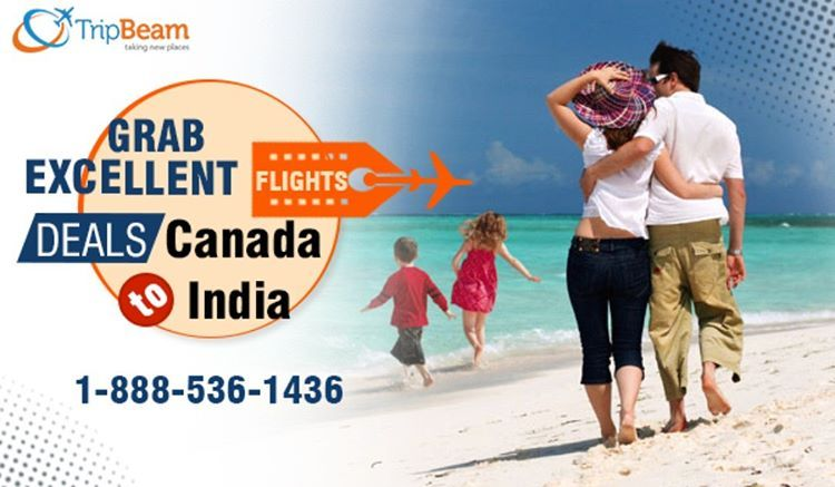 #Tripbeam offers the best travel deals on air tickets from #Canada to #India. So, wait no more and book your #flight to India now within Budget!  For more information CALL:- 1-888-536-1436 (Toll-Free), info@tripbeam.ca.   #cheapticketstoindia #cheapairlines #lowestfares #Travel #CanadatoIndiaflightdeals #CanadatoIndia #Indian #Travellers #travellovers #TourPackages #TravelOffers #CheapAirlineTickets #Vacations #Destinations #FlightBookingOnline