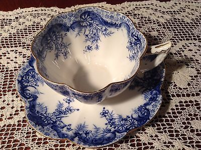 Antique WILEMAN Foley (Pre Shelley) Violet Shape Cup and Saucer'Fern Print' 9122