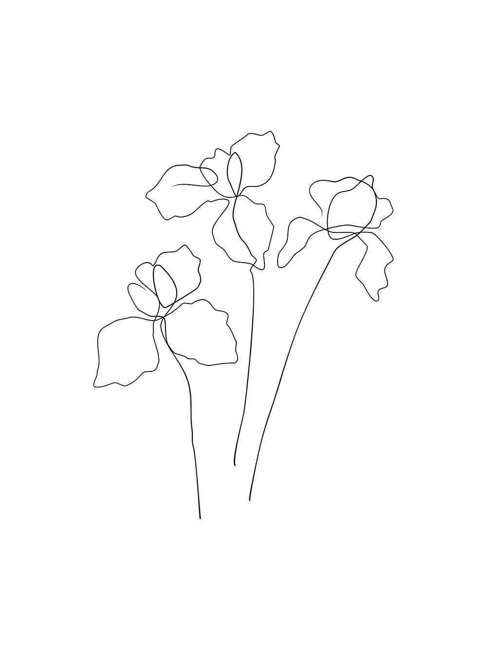 Iris Flower One Line Drawing Minimalist Poster Elumina Shop In 2020 Flower Line Drawings Line Drawing Tattoos Iris Drawing