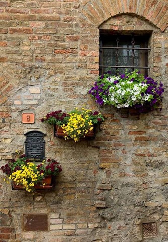 making a plain wall beautiful | Awesome Windows | Pinterest ...