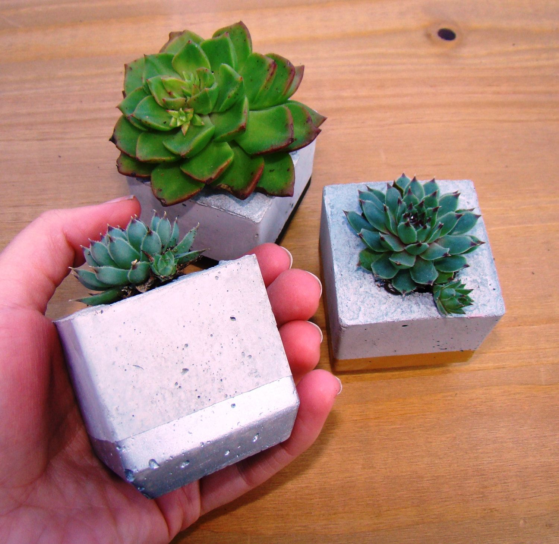 Metallic Planter Trio, Succulent Planter Trio, Gold Succulent Pot, Plant