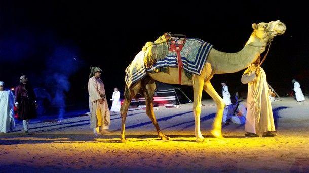سبق بالصور شدت القافلة تمثل السعودية بمهرجان الشارقة Cultural Capital Islamic Culture Cultural Identity