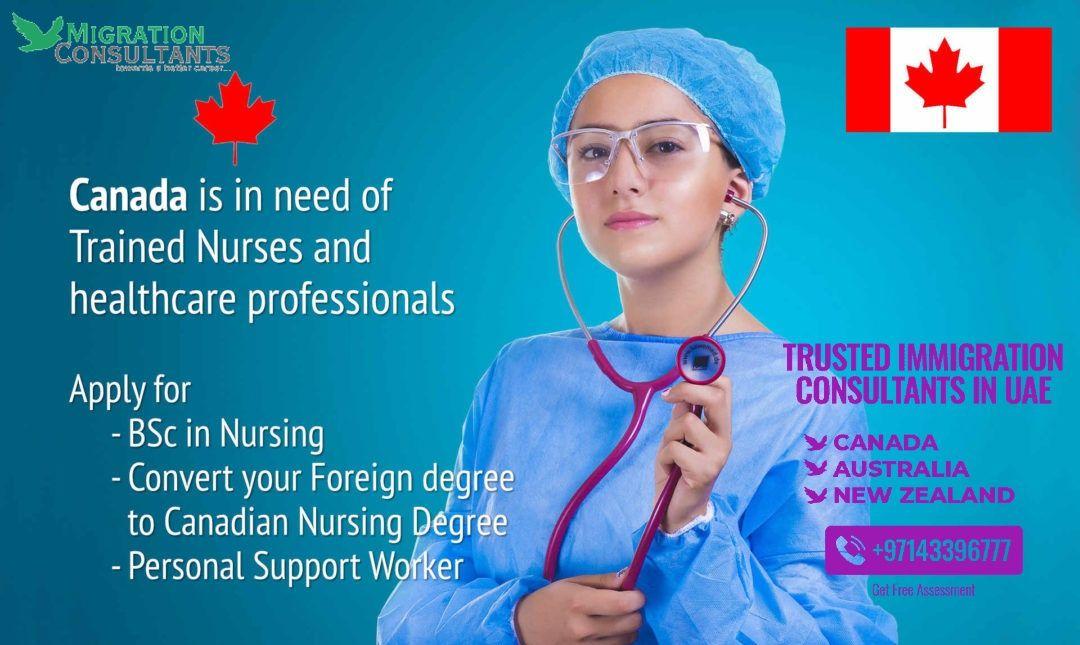 Are you a nurse migrate to canada consulting nurse