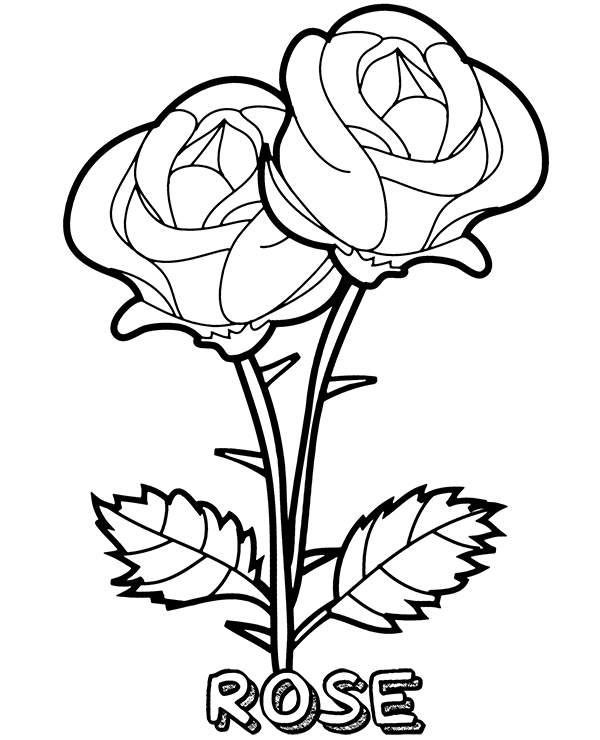 Two Roses Coloring Page Printable Flower Coloring Pages Rose Coloring Pages Mandala Coloring Pages
