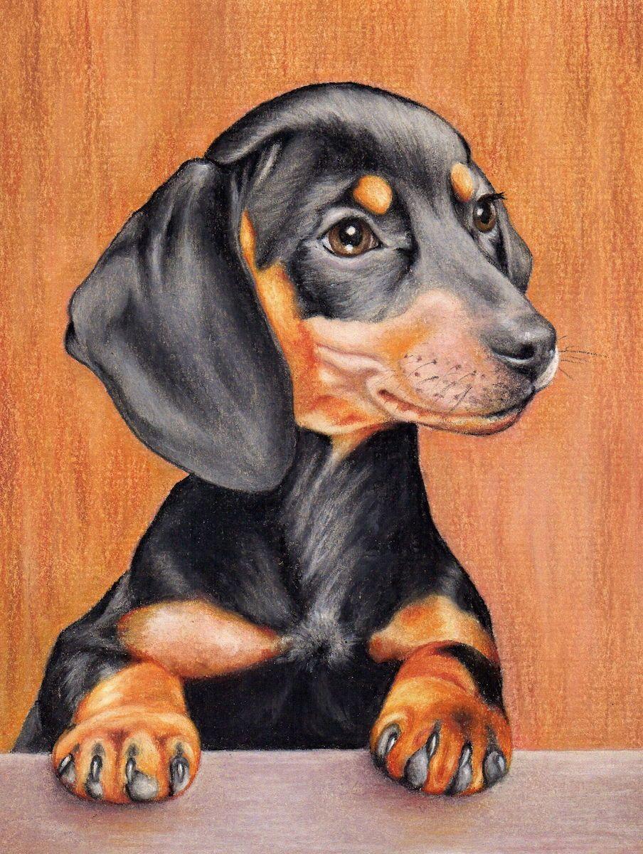 Draw These Animals Using Pastel Pencils Dog Drawing Animal Paintings Dog Art