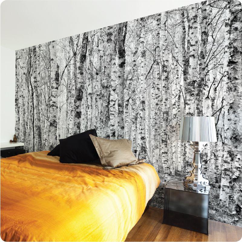 Birch wallpaper behind bed condo pinterest birches for Wallpaper for wall behind bed