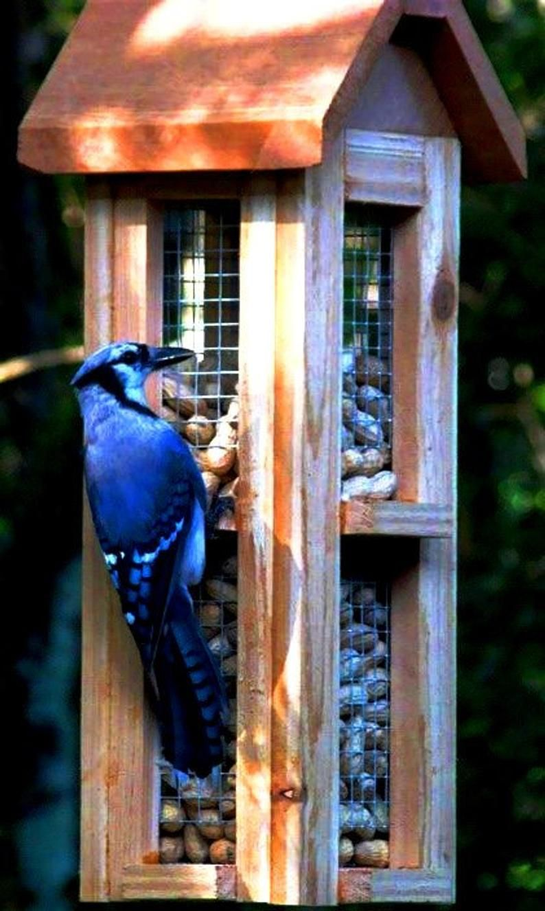 Beautiful Cedar Wood Whole Peanut Bird Feeders Unique Bird Feeders For Blue Jays And Woodpeckers Unique Bird Feeders Wood Bird Feeder Peanut Bird Feeder