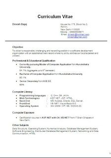 Software Professional Resume Sample Template Example Ofbeautiful