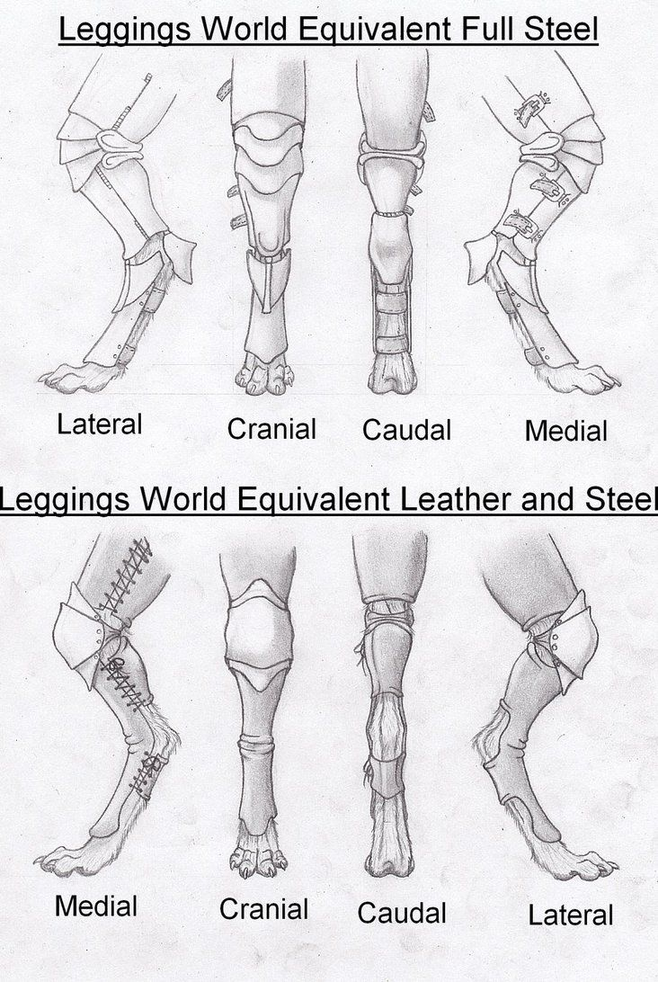 Armor, legs, anthro | Drawings, Art sketches, Animal drawings