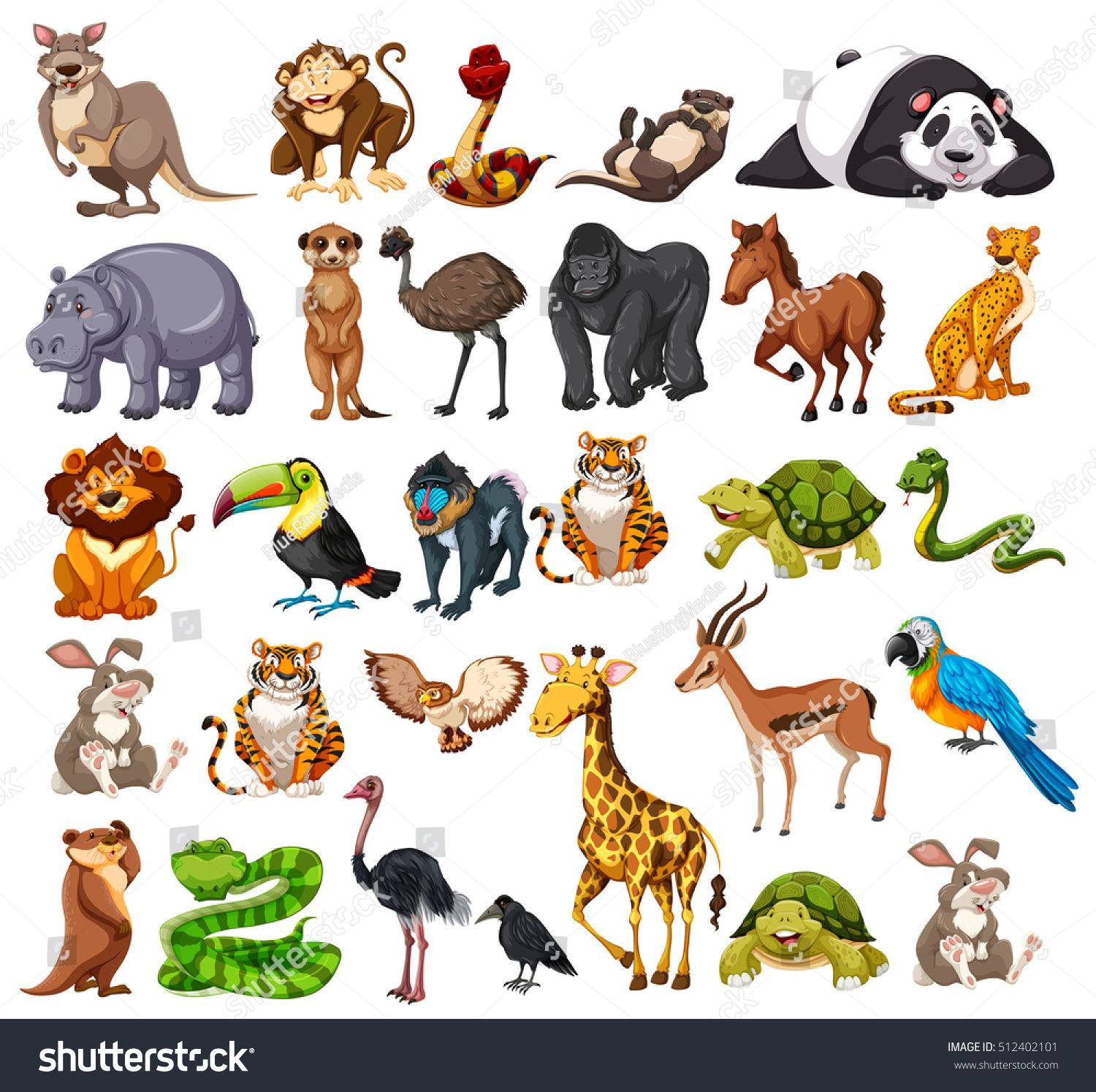 Different types of wild animals on white illustration image vector ...