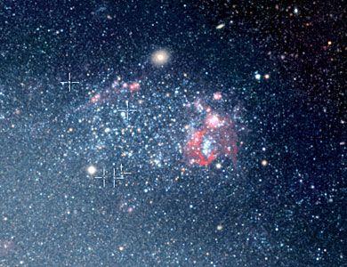 Cepheids in NGC 300