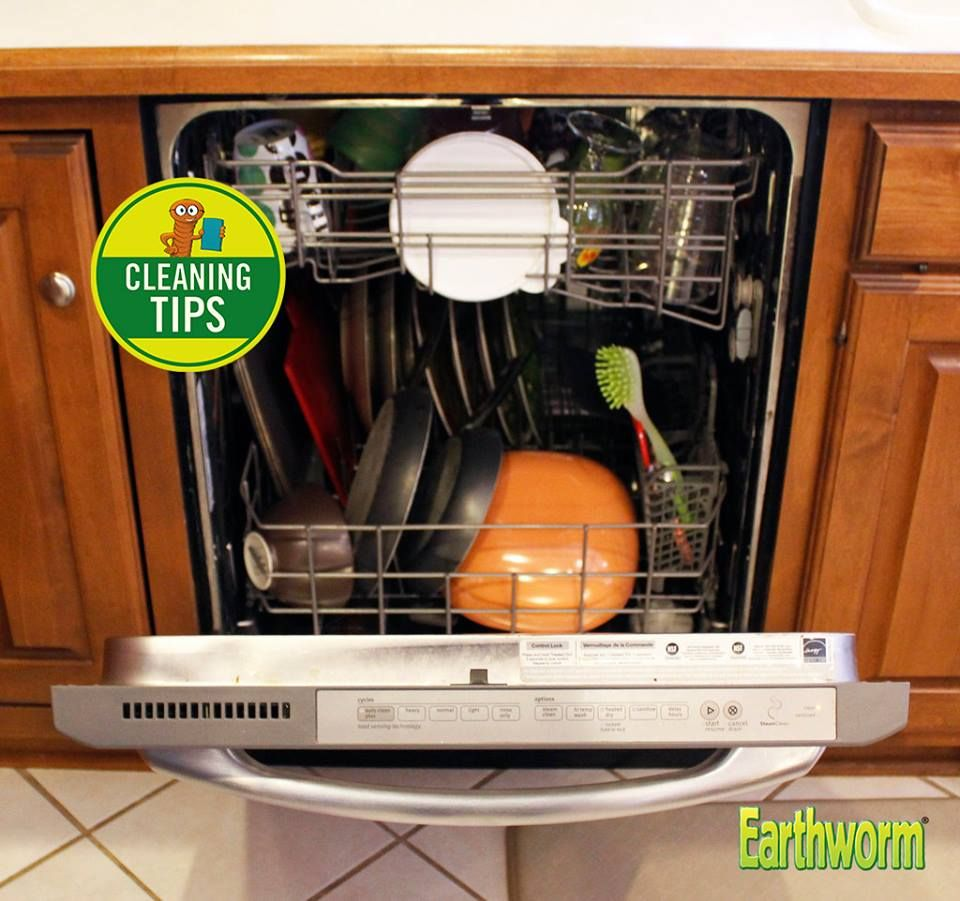 How To Clean A Dishwasher Drain Cleaning Tip Use Earthworm Drain Cleaner To Clean Your Dishwasher